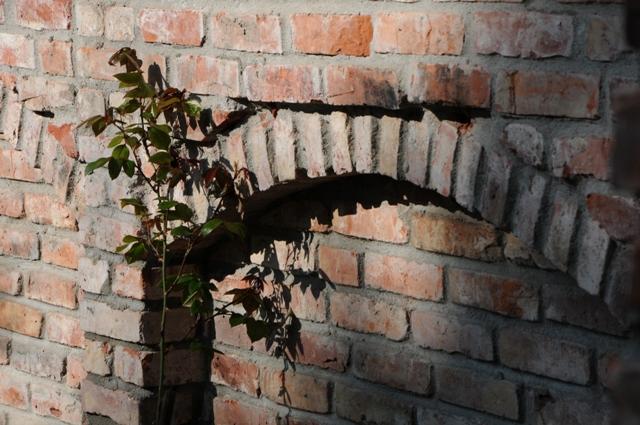 Alte ziegel b a c k s t e i n b a u - Gartenmauer backstein ...